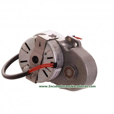 Motor volteo Masalles G60 - G180 - 75A