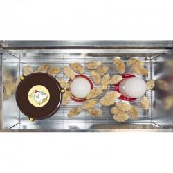 Criadora pollitos Baby Park con calefactor Nanny Hen