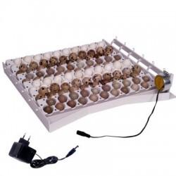 Sistema automático de volteo para 42 huevos con 6 bandejas